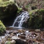 瓢ヶ岳(ふくべがたけ)からの伏流水
